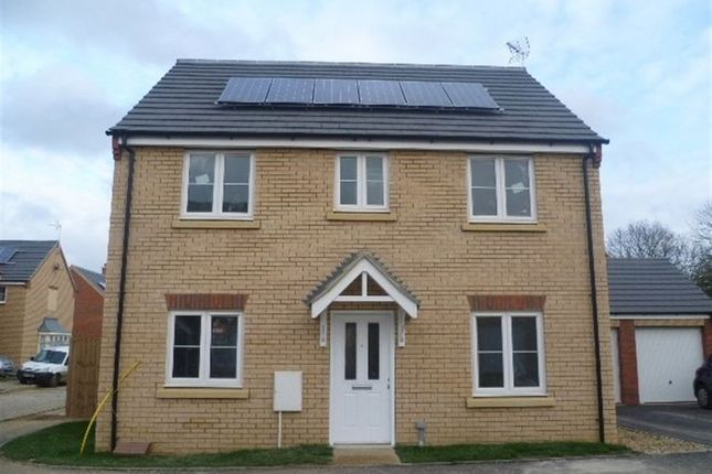 Thumbnail Property to rent in Millport Drive, Eye, Peterborough