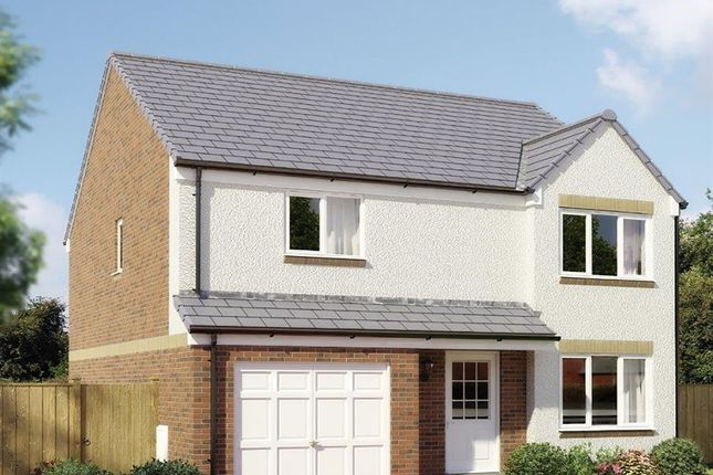 "Thumbnail Detached house for sale in ""The Balerno"" at Strath Brennig Road, Smithstone, Cumbernauld"