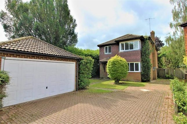 Thumbnail Detached house to rent in Ash Close, Lingfield