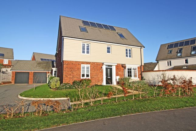 Thumbnail Detached house for sale in Albatross Road, Exeter