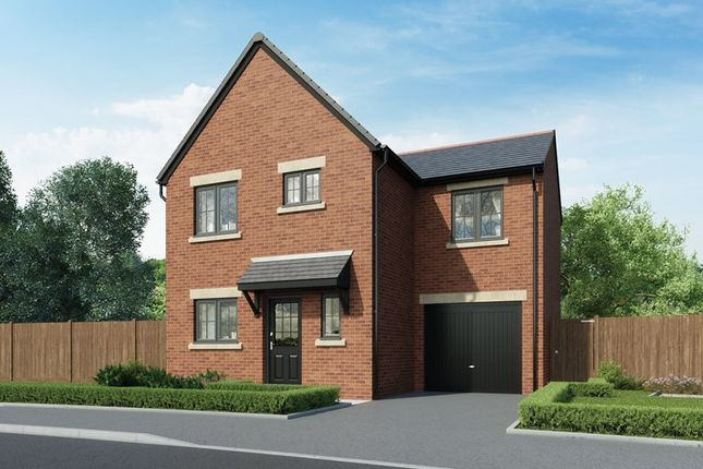 Thumbnail Semi-detached house for sale in Coquet Park, Robson Grove, Felton, Morpeth, Northumberland