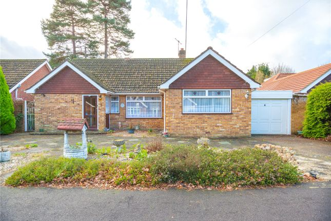 Thumbnail Bungalow for sale in Ramsay Road, Windlesham, Surrey