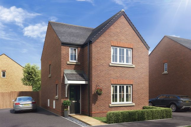 "Thumbnail Detached house for sale in ""The Hatfield"" at Boughton Green Road, Northampton"
