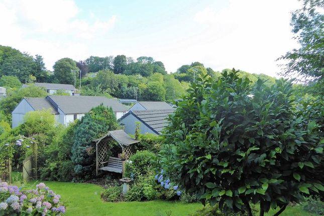 Views of Cole Moore Meadow, Tavistock PL19
