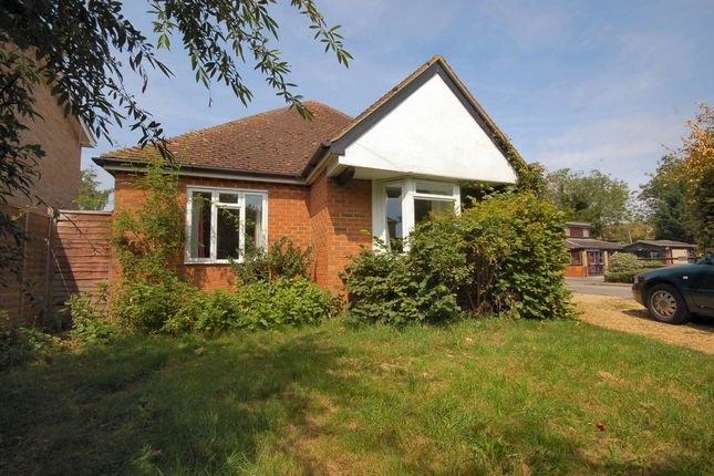 Thumbnail Detached bungalow to rent in Kingfisher Close, Bourn, Cambridge