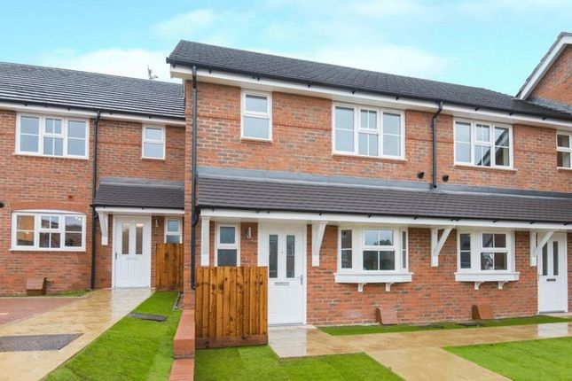 Thumbnail Terraced house to rent in Ash Grove, Chesham