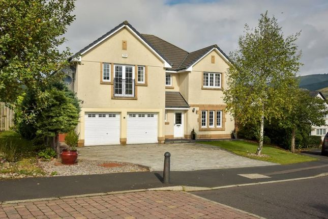 Thumbnail Detached house for sale in 55 Cardrona Way, Cardrona, Peebles
