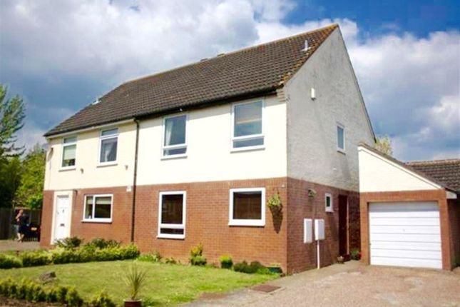 Thumbnail Property to rent in Courtenay Close, Norwich