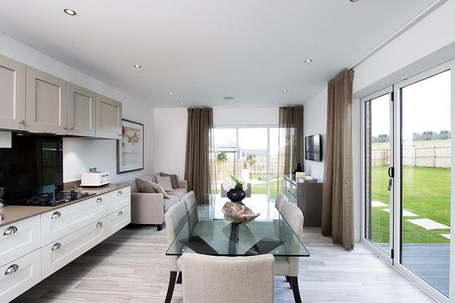 "Thumbnail Detached house for sale in ""The Tetbury"" at Vert Court, Haldane Avenue, Haddington"