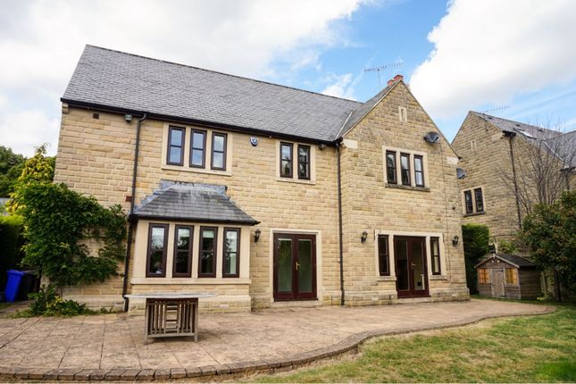 Thumbnail Detached house to rent in Bushey Wood Grove, Sheffield