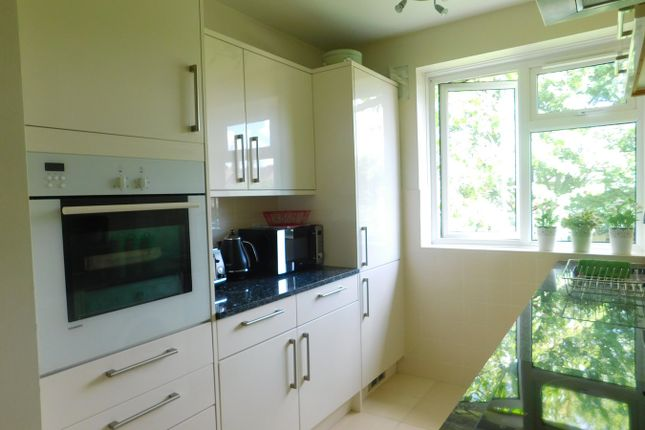 Thumbnail Flat to rent in Greatdown Road, London