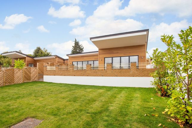 Thumbnail Bungalow to rent in Marlow Road, Marlow