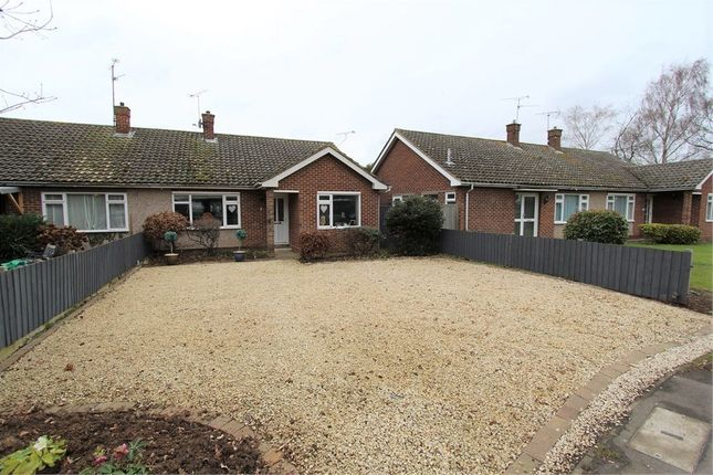 Thumbnail Bungalow for sale in Lawn Lane, Chelmsford
