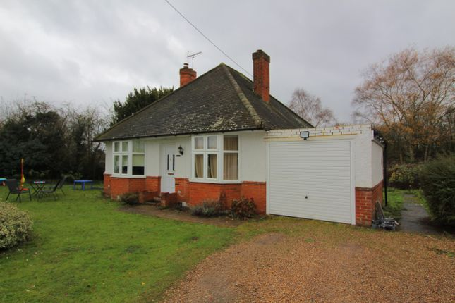 Thumbnail Bungalow to rent in Littlefield Green, White Waltham, Maidenhead