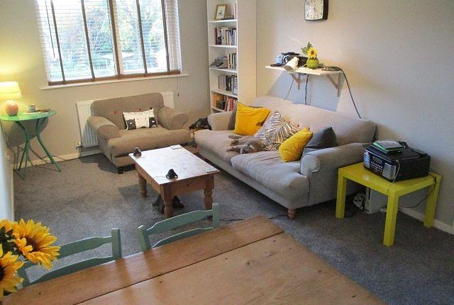 Thumbnail Flat to rent in Magnus Court, Beeston