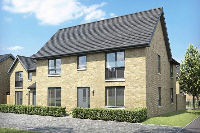 "Thumbnail Detached house for sale in ""Brechin"" at Maybury Road, Barnton, Edinburgh"