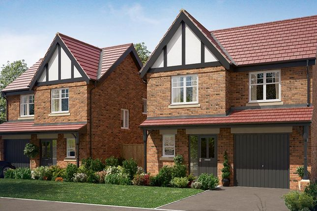 "Thumbnail Detached house for sale in ""The Newton"" at Wingfield Road, Alfreton"