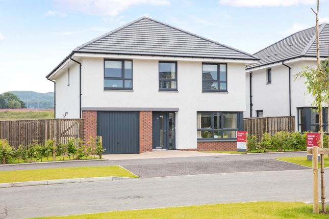Thumbnail Detached house for sale in Rookerywood Way, Symington