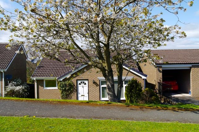 Thumbnail Detached house for sale in Bishopton Way, Hexham