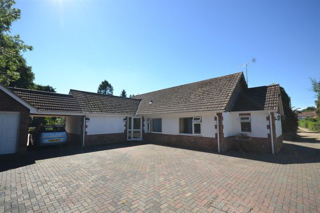 Thumbnail Detached bungalow for sale in Wroxham, Norwich