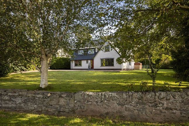 Thumbnail Detached house for sale in Tower View, Creevy Road, Lisburn