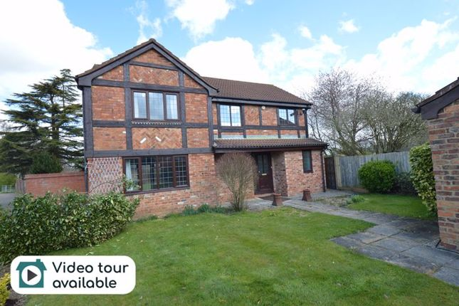 Thumbnail Detached house to rent in Copthorne, Luton