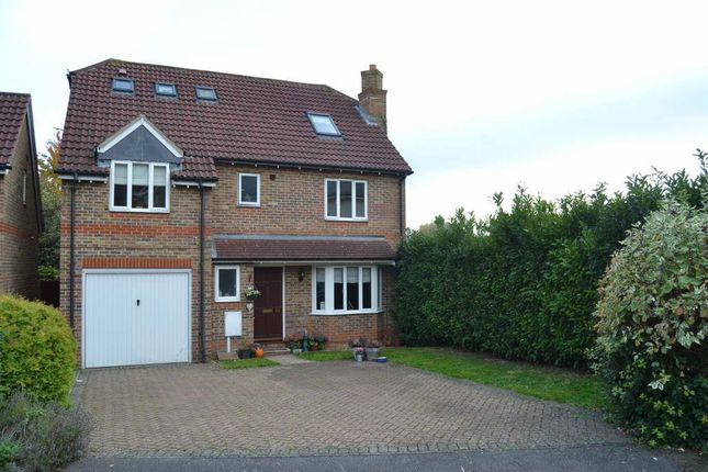 Thumbnail Detached house to rent in St. Margaret Drive, Epsom