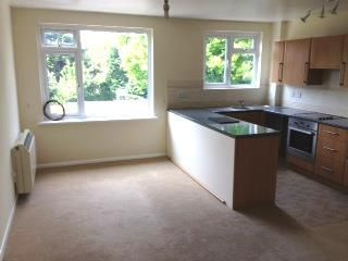 Open Plan Lounge/Kitchen: