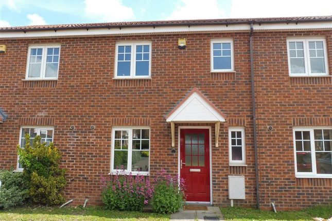 Thumbnail Property to rent in Dexter Avenue, Grantham