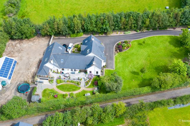 Thumbnail Detached house for sale in Windyhill Road, Limavady
