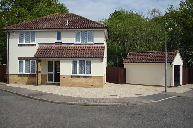Thumbnail Detached house for sale in Edmund Green, Gosfield, Halstead