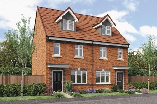 "Thumbnail Mews house for sale in ""Tolkien"" at Croston Road, Farington Moss, Leyland"