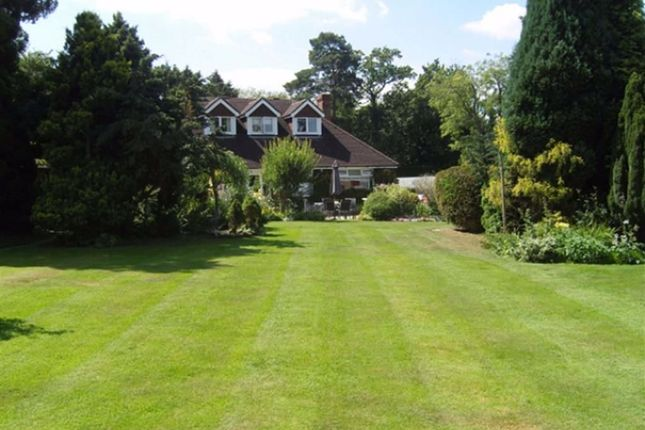 Thumbnail Detached house for sale in London Road, Crowborough