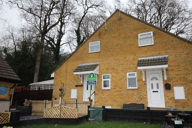Thumbnail Terraced house for sale in Arbourvale, St. Leonards-On-Sea