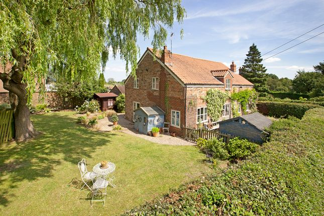 Thumbnail Detached house for sale in Bilton-In-Ainsty, York