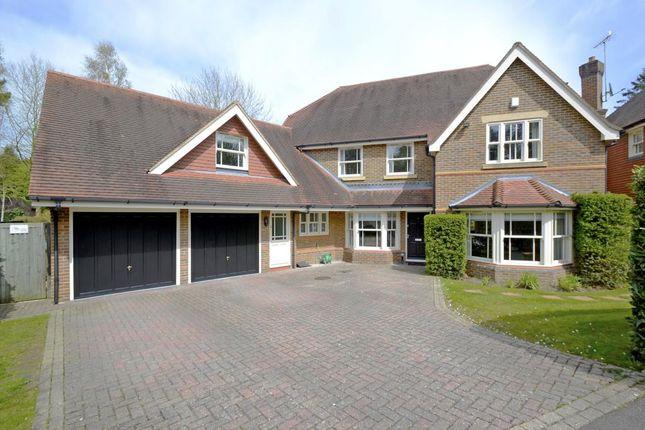 Thumbnail Detached house to rent in Sandringham Park, Cobham