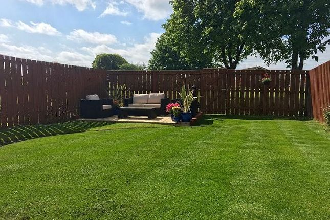 Thumbnail Semi-detached house for sale in Ladybank, Chapel Park, Newcastle Upon Tyne