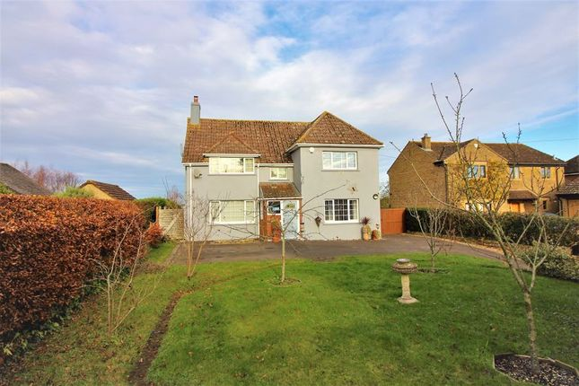 Detached house for sale in Compton Road, South Petherton