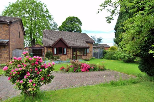 Thumbnail Detached bungalow for sale in Fell View, Garstang, Preston