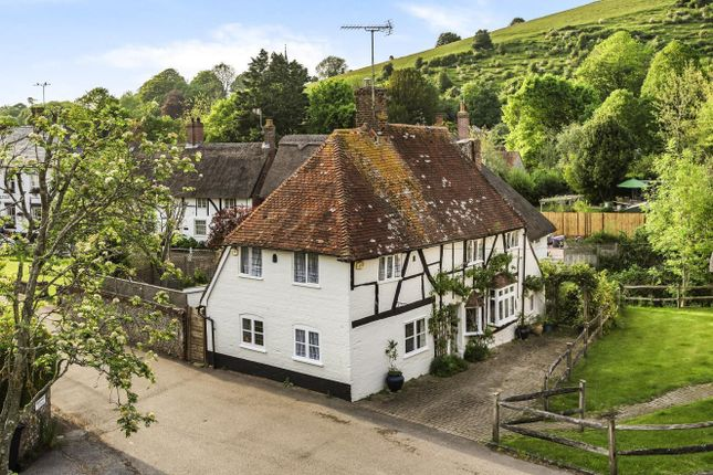Thumbnail Detached house for sale in High Street, East Meon