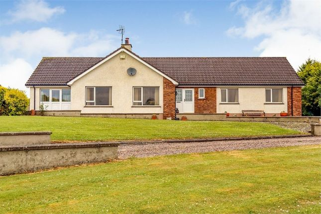 Thumbnail Detached house for sale in Tullaghgore Road, Ballymoney, County Antrim