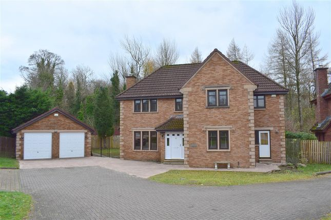 Thumbnail Detached house to rent in Fairlie, East Kilbride, Glasgow