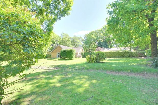 Photo 19 of Woodland Way, Purley CR8