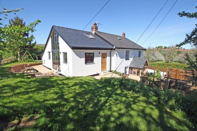 Thumbnail Detached house for sale in Shute Village, Shobrooke, Crediton