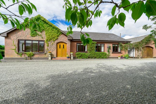 Thumbnail Detached house for sale in Lios Rún, Hill Of Rath, Drogheda, Louth