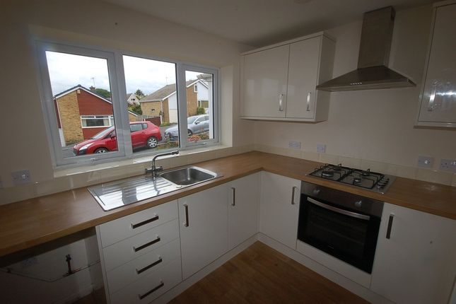 Thumbnail Semi-detached house to rent in The Evergreens, Blackburn