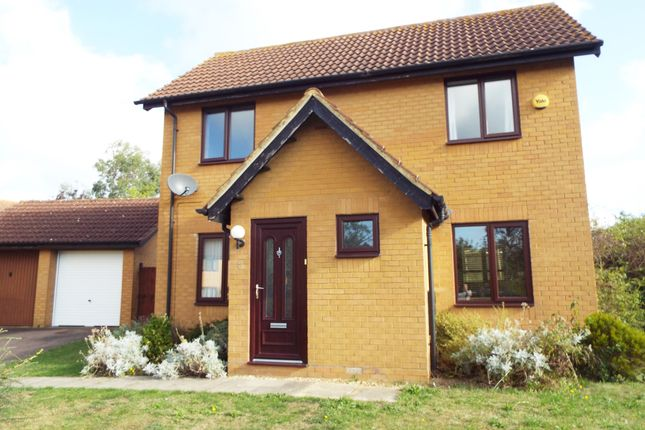 Thumbnail Detached house to rent in Bowen Close, Brownswood