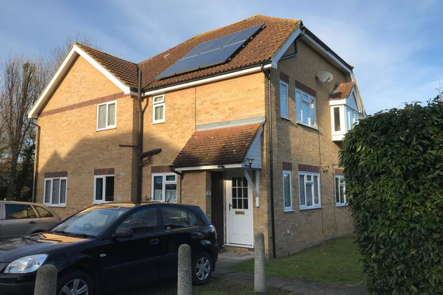 Thumbnail Property for sale in Roundacre, Halstead