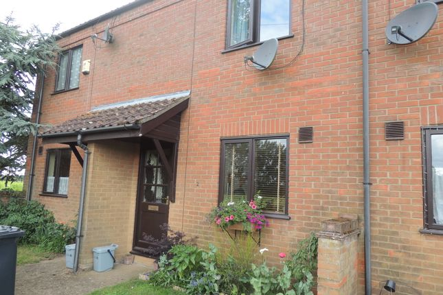 Thumbnail Terraced house to rent in Station Road, West Dereham