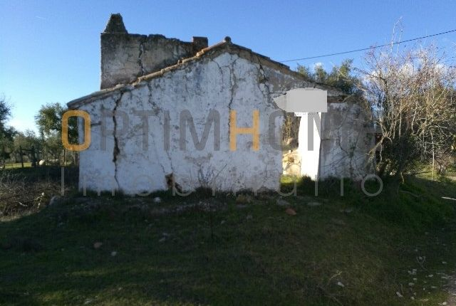 Land for sale in Monte Da Enxara, Benavila E Valongo, Avis